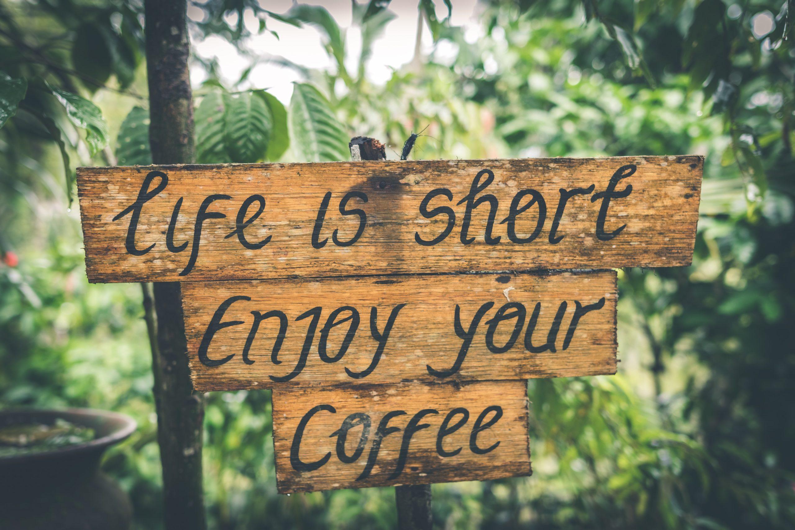 Radość życia